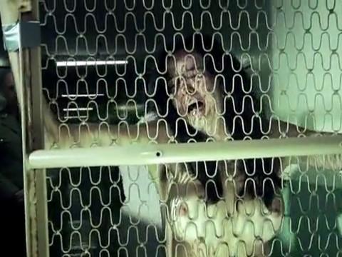 Тюремная порка полуголой девушки