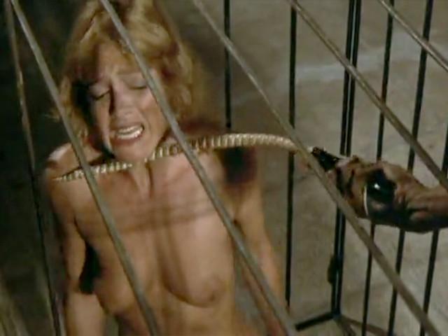 Новобрачная пара попадает в странную тюрьму